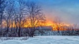 The 6:22 To Toronto In Sunrise Fog 20150306