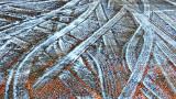 Frozen Tracks 20150312