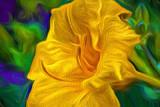 Yellow Orange Lily 'Art' P1150012-4