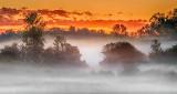 Ground Fog At Sunrise P1150268-70