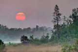 Red Sun Rising P1150679-81