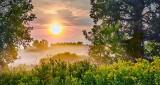 Misty Sunrise 45543-5