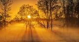 Sunrise Sunrays P1180546-8