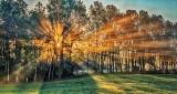 Sunrise Sunrays P1180750-2