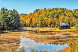 Canadian Shield Autumnscape P1190234-6