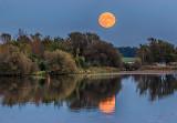 Harvest Moonrise P1190410-2
