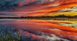 Irish Creek Sunrise P1190803-5