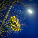 Streetlight Holiday Wreath 48067-9
