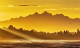 Early Morning Mountains 20343
