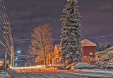 Snowy McGill Street 48137-8