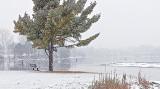 Lower Reach In Falling Snow DSCF5738