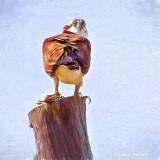 Osprey On A Pole 'Art' S0036931