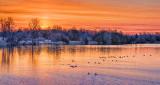 Rideau Canal Sunrise P1050330-2