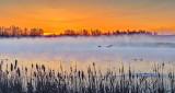 Misty Irish Creek Sunrise P1050864-6