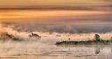 Misty Rideau Canal At Sunrise P1060610-4