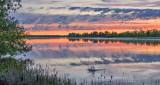 Beaver Tail Slap At Sunrise P1070148