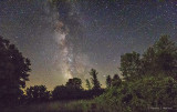 Milky Way Rising Over Trees 48622