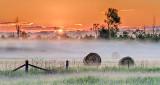 Bales In Sunrise Mist P1080210-2