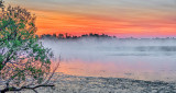 Irish Creek In Misty Sunrise P1080250-2