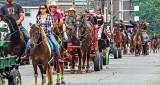 Parade of Horses DSCF13473