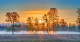 Sunrise Ground Fog P1100489-94