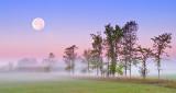 Sturgeon Moon Over Ground Fog P1100469-71