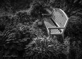 Garden Bench DSCF21545-7