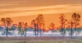 Sunrise Ground Fog P1110491-7