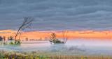 Sunrise Ground Fog P1110510-2