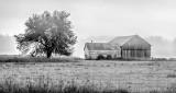 Farm & Fog P1110764-8