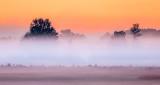 Ground Fog At Sunrise P1110799