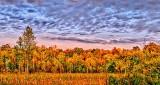 Autumn Trees At Sunrise P1120952-4