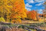 Autumnscape P1140461-3