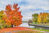 Autumn Rideau Canal P1140867-9