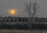 20161114 Supermoon Setting Over The Swale DSCN00784-5