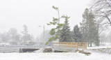 Turtle Island Bridge In Snowfall DSCN01030-2