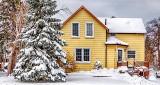 November Snow DSCN01063-5