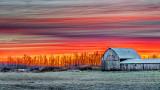 Barn At Sunrise P1150255-61
