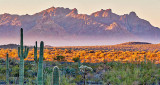 Ajo Mountains At Sunrise 82698