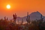 Desert Sunrise 20080110