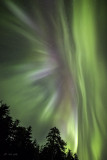 Hot August nights flare-7580.jpg