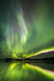 Lights with Matt Brown-8358.jpg