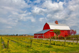 One Red Barn