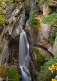 Maligne Canyon