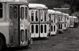 Transit Bus Graveyard