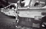 Transit Bus Graveyard II