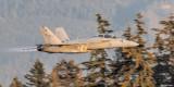T/A-18 Super Hornet