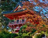 Teahouse Splendour
