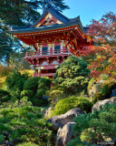 The Little Red Teahouse