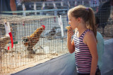 Girl & Rooster